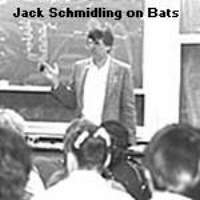bat in hand giving lecture